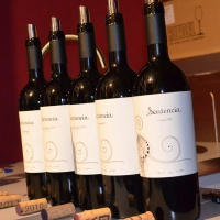 La vinoteca Tiza y Flor presenta los vinos de la bodega Sentencia en Alicante