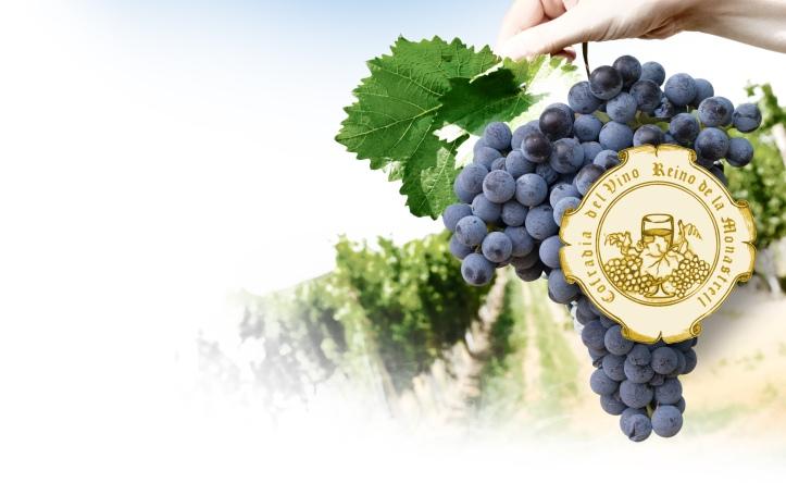 cofradia winespiralproject