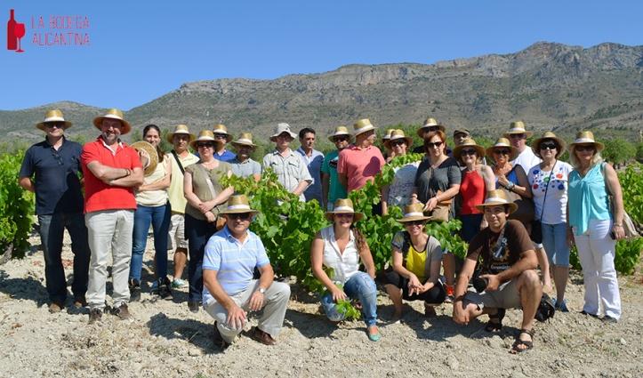Los partcipantes en la visita durante la visita a una de las microviñas del recorrido. /LBA