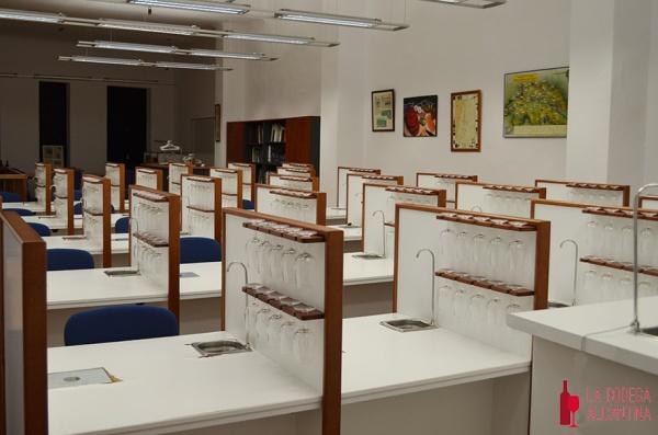 La Escuela de Catas de Alicante se viste de gala para la clausura del Curso de Sumiller Profesional que este año alcanzaba su séptima edición. /LBA