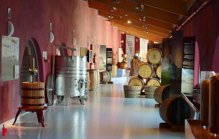 La bodega Emina en Valbuena del Duero tiene integrado un museo en la primera planta de la bodega. /LBA