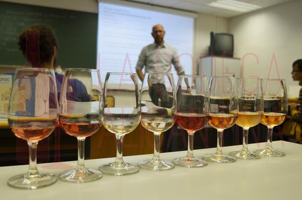En los vinos catados se comprobó el amplio abanico de colores que puede presentar este tipo de vino. /LBA