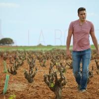 """Vidal Pérez, viticultor y bodeguero: """"No entiendo el vino sin la historia y el mundo que le rodea"""" (I)"""