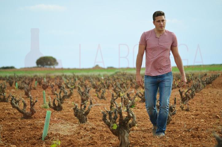 Vidal Pérez es un apasionado de la viticultura y un enamorado de su tierra natal Manchuela. /LBA